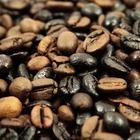 Онищенко поддержал полный запрет кофе на территории школ