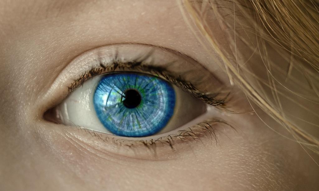 Ученые обнаружили в глазу человека жировую ткань, которая поможет защитить сетчатку