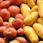 Картофель помогает снизить давление