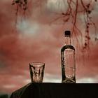Как распознать алкозависимость?