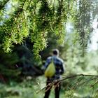 Природа защищает от психических расстройств и низкой самооценки