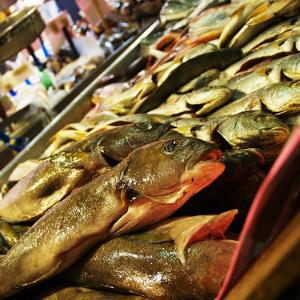 Рыба бережет сердце смолоду
