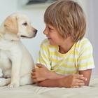 Домашние животные помогут в борьбе с астмой