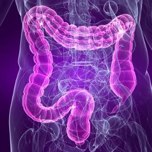 Пробиотики улучшают состояние кишечника и избавляют от стресса