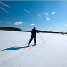 Зимние виды спорта: лыжи
