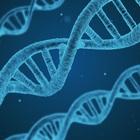 Российские ученые выяснили, как суррогаты алкоголя изменяют ДНК