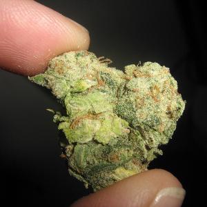 наркотиков спайс человека количество употребления синтетических