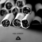 Сигареты унифицировали