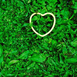 Истоки сердечных проблем