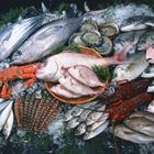 Морепродукты способны значительно снизить работу иммунитета