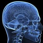 Российские ученые разработали прибор, читающий мысли парализованных людей