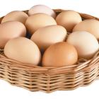 Яйца защищают грудь от рака