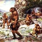 Ученые выяснили из-за чего погибли неандертальцы
