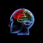 Новые методы выявления болезни Альцгеймера