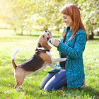 Любители собак более социально активны