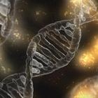 Россия может стать мировым лидером в области биотехнологий и фармацевтики