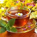 Полезные свойства трав и чаев с ними