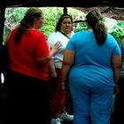 Толстяки против «весизма»
