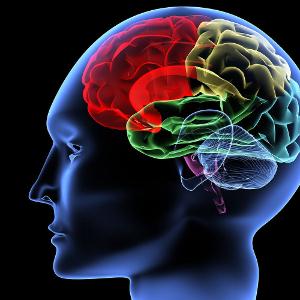 метиленовый синий головного мозга препарат память
