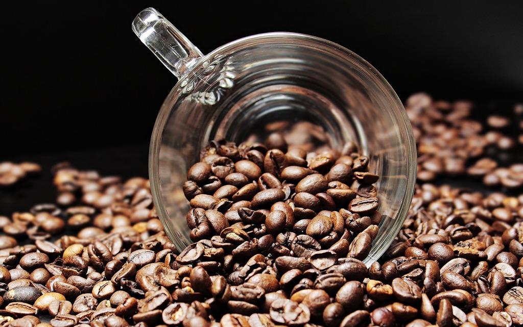 Ученые рассказали о пользе кофеина для почек