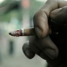 Налог на сигареты дает работу и экономит бюджет
