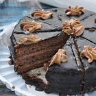 За каждый лишний кусочек торта теперь можно винить нейроны