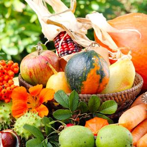Питание осенью.  Как подготовить организм к зиме