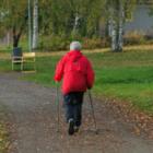 Нордическая ходьба: как ходить