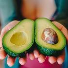 Авокадо признан одним из самых полезных продуктов для здоровья