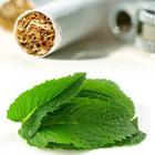 Сигареты с ментолом приближают инсульт