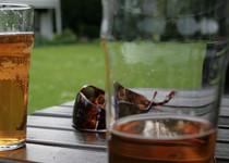 Алкоголь все еще считают средством для расслабления