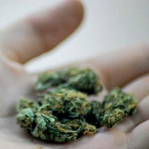 Три мифа о «легких» наркотиках