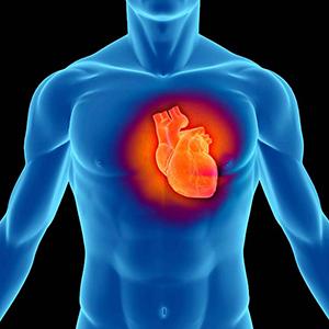 Михаил Яковлевич Руда: «При инфаркте время - ключевой фактор, а догоспитальный этап – определяющий»