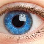 Правильное питание помогает сохранить зрение