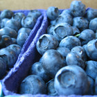 cyclotram.blogspot.com/