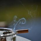 Ученикам <nobr>6-х</nobr> и <nobr>7-х</nobr> классов <nobr>Южно-Сахалинска</nobr> рассказали о&nbsp;вреде табачного дыма